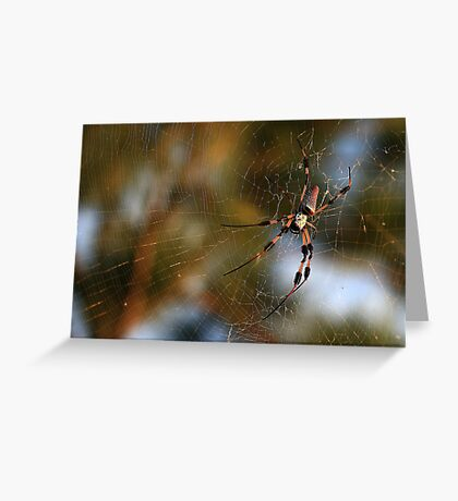 The Itsy Bitsy Spider Greeting Card
