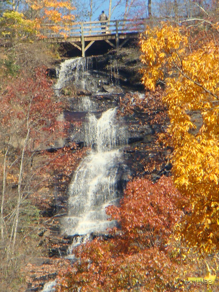 Amicalola Falls by ronf1492