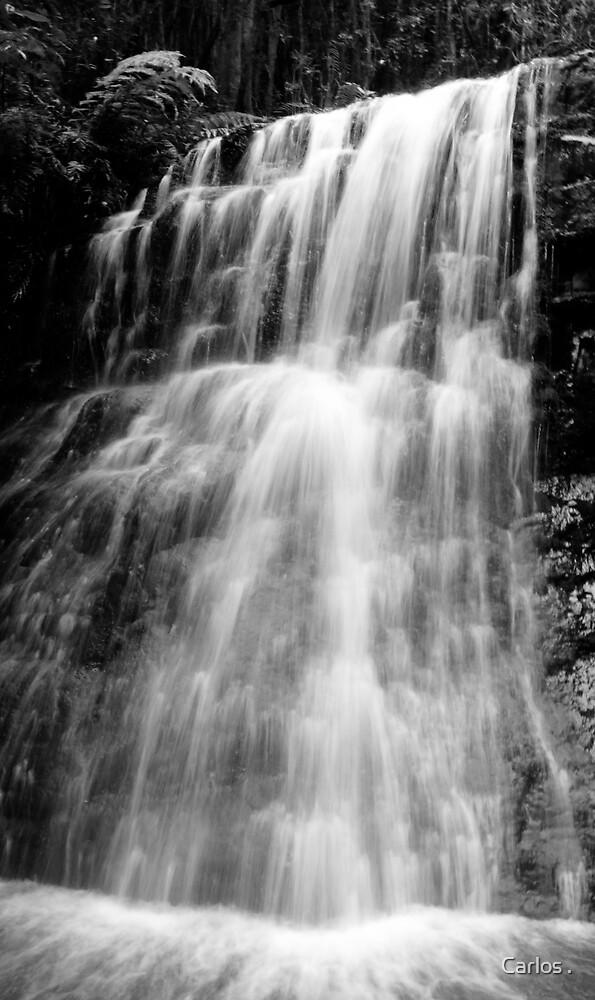 Silver Falls by Carlos .