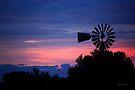 Daybreak by Vicki Pelham