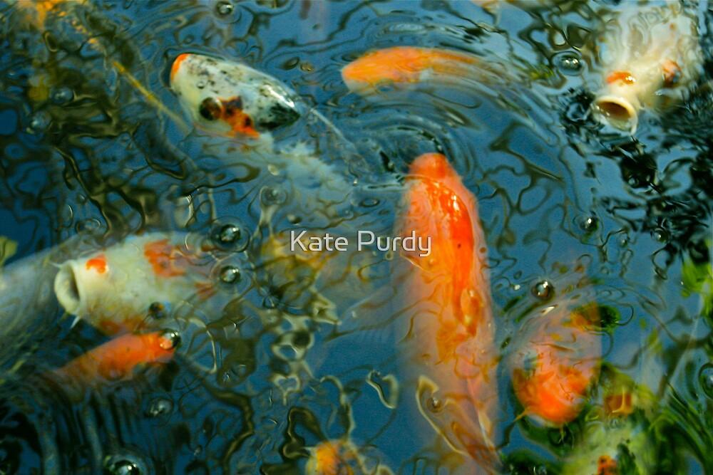 koi 9 by Kate Purdy