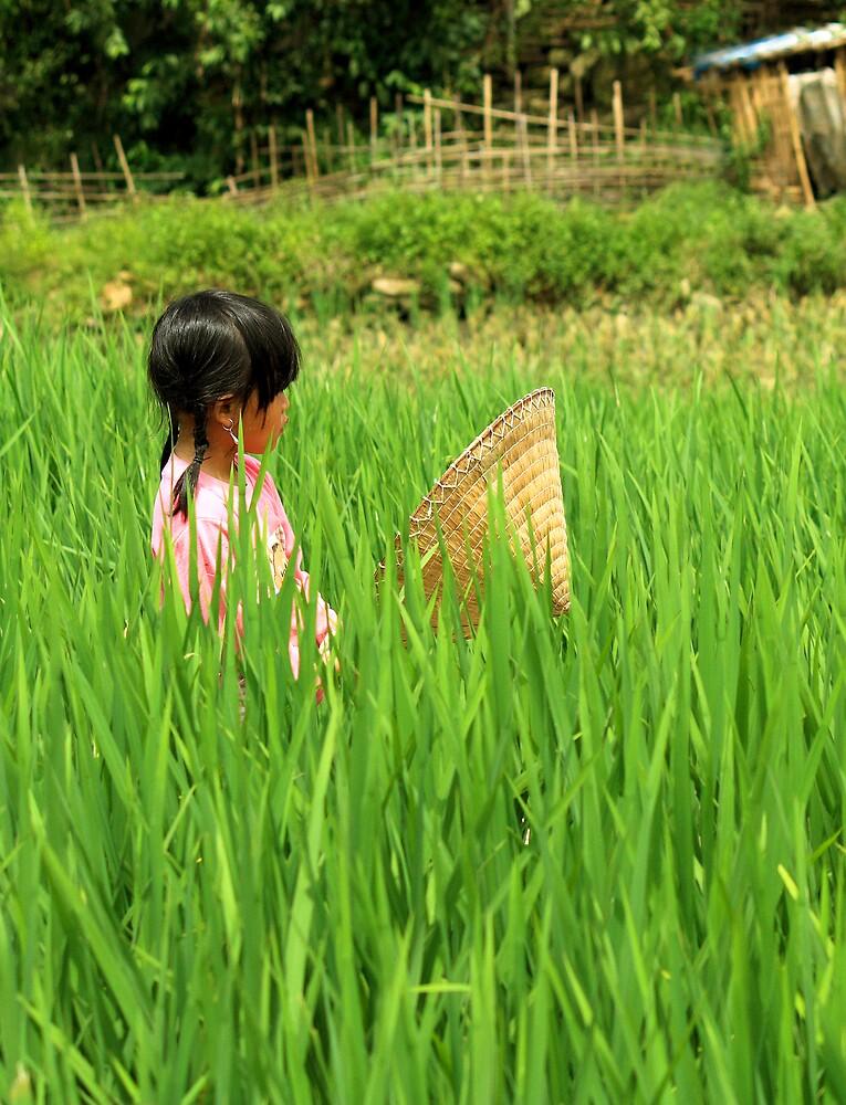 Vietnamese girl by jenheal