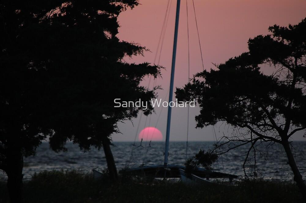 Sailor's Delight by Sandy Woolard