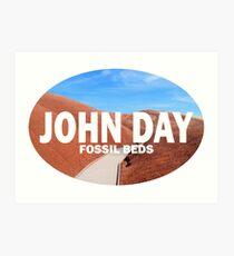 John Day Fossil Beds Stickers/Shirts Art Print