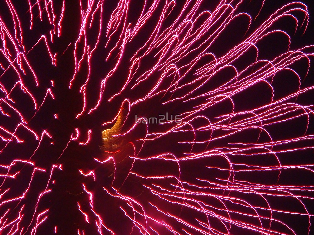 RED Summer Fireworks by bam246