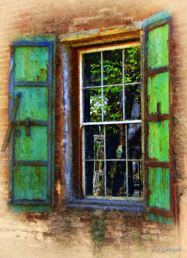 The Window by pat gamwell