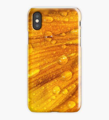 Sunflower 7 iPhone Case