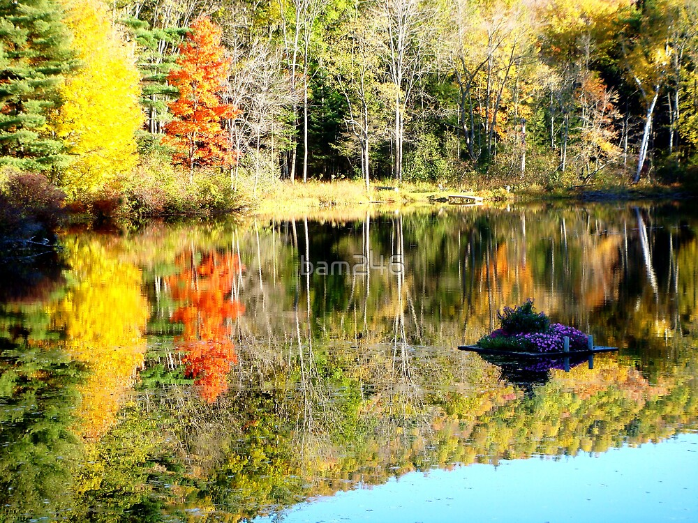 Autumn In Vermont by bam246