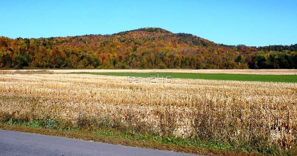 Vermont Countryside by bam246