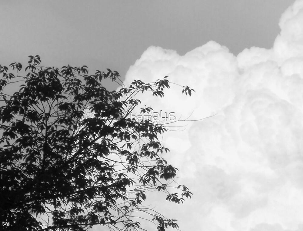 B&W Clouds by bam246