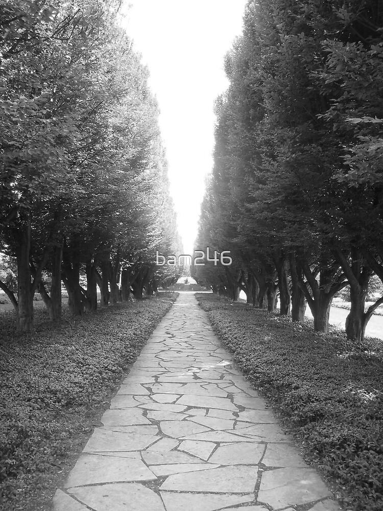 B&W Stone Path by bam246
