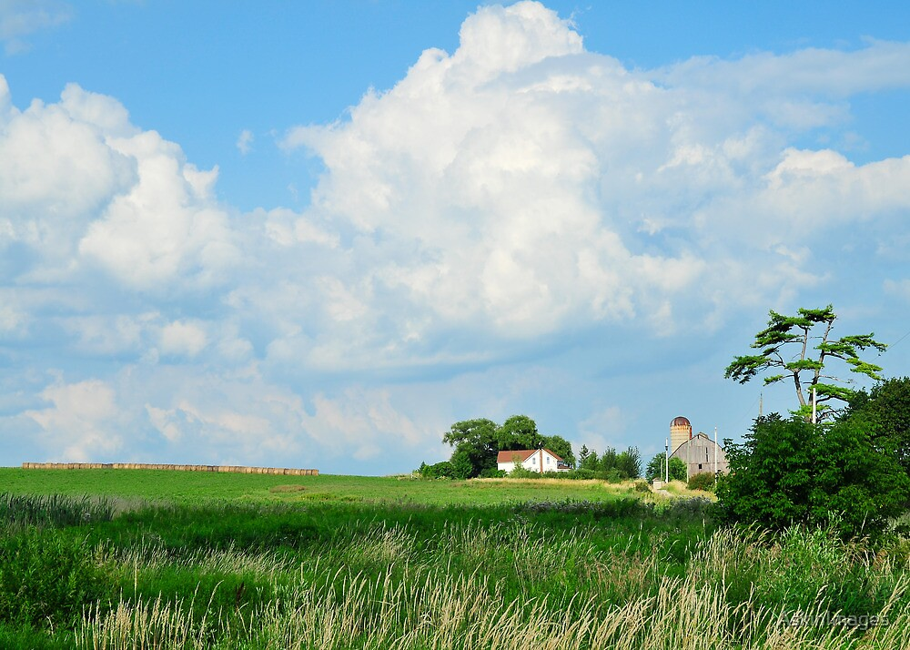 Summer farmscape by AskinImages