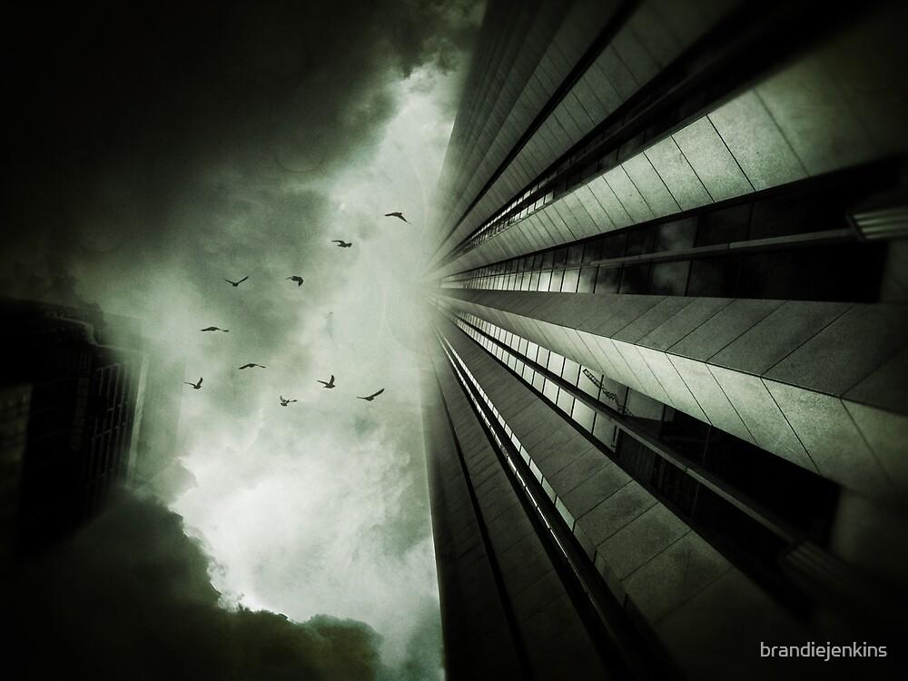 The sky is falling by brandiejenkins