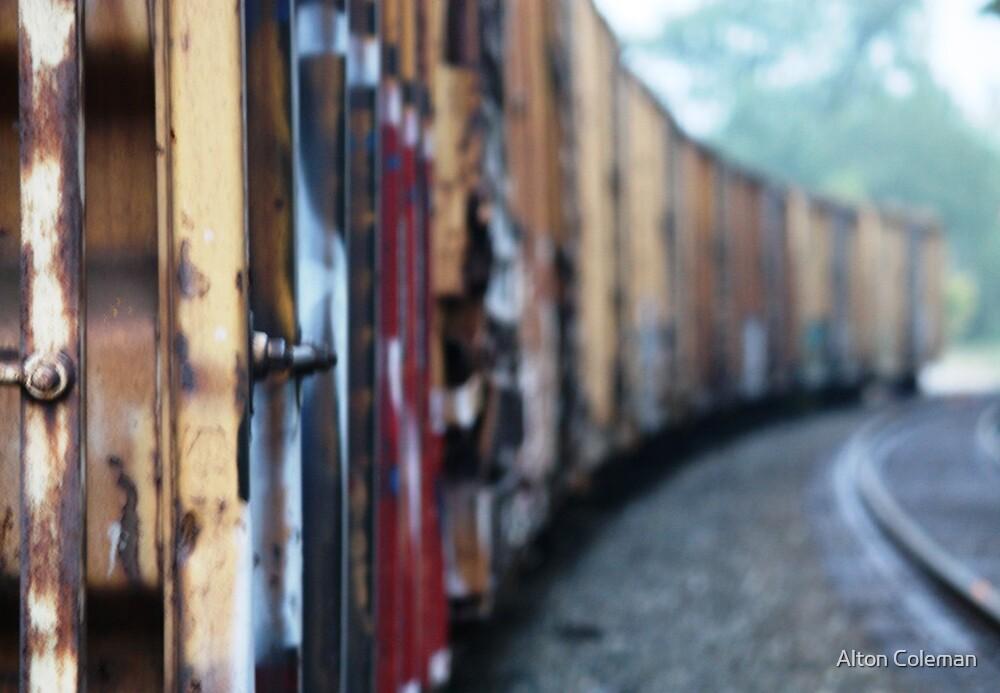 """Rails Thru Russellville I"" by Alton Coleman"