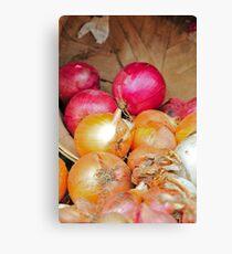 Onions in a barrel Canvas Print