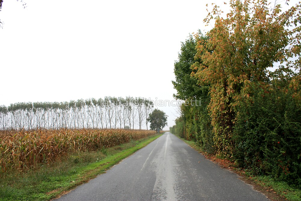 Country road by annalisa bianchetti