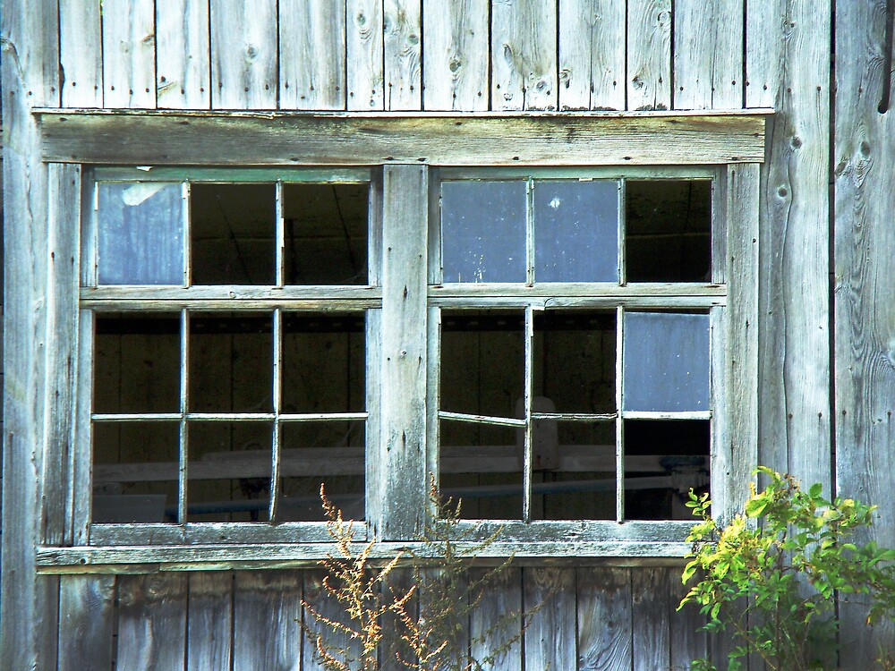 Broken Windows by marchello