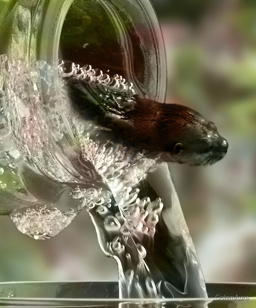 Otter Exiting Champagne Bottle by GolemAura