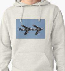 Black Diamond Jet Team Pullover Hoodie