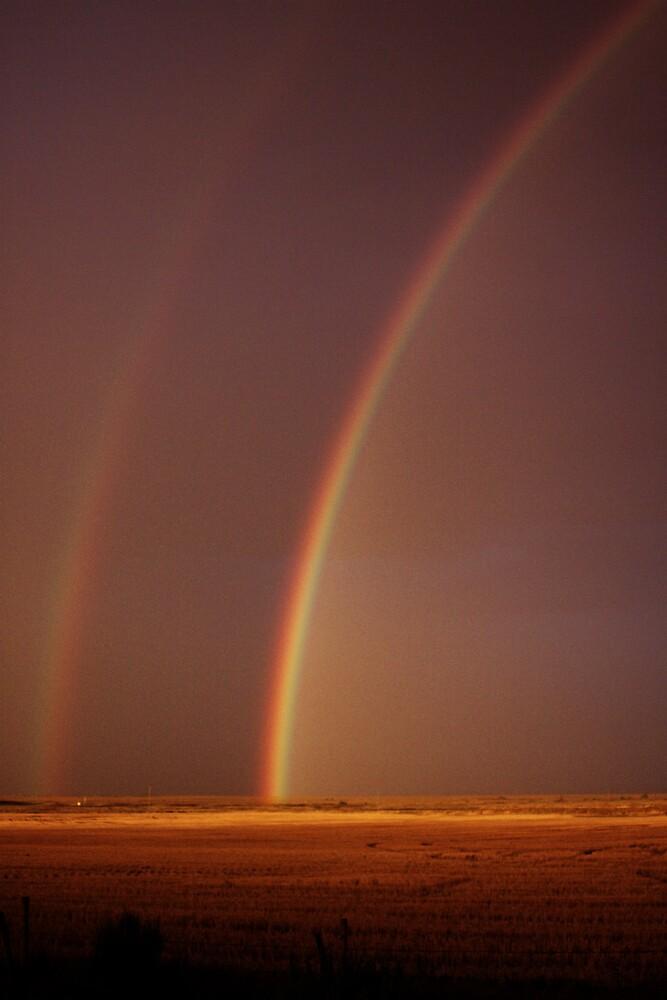 Golden Rainbow by Logan Biesterfeldt