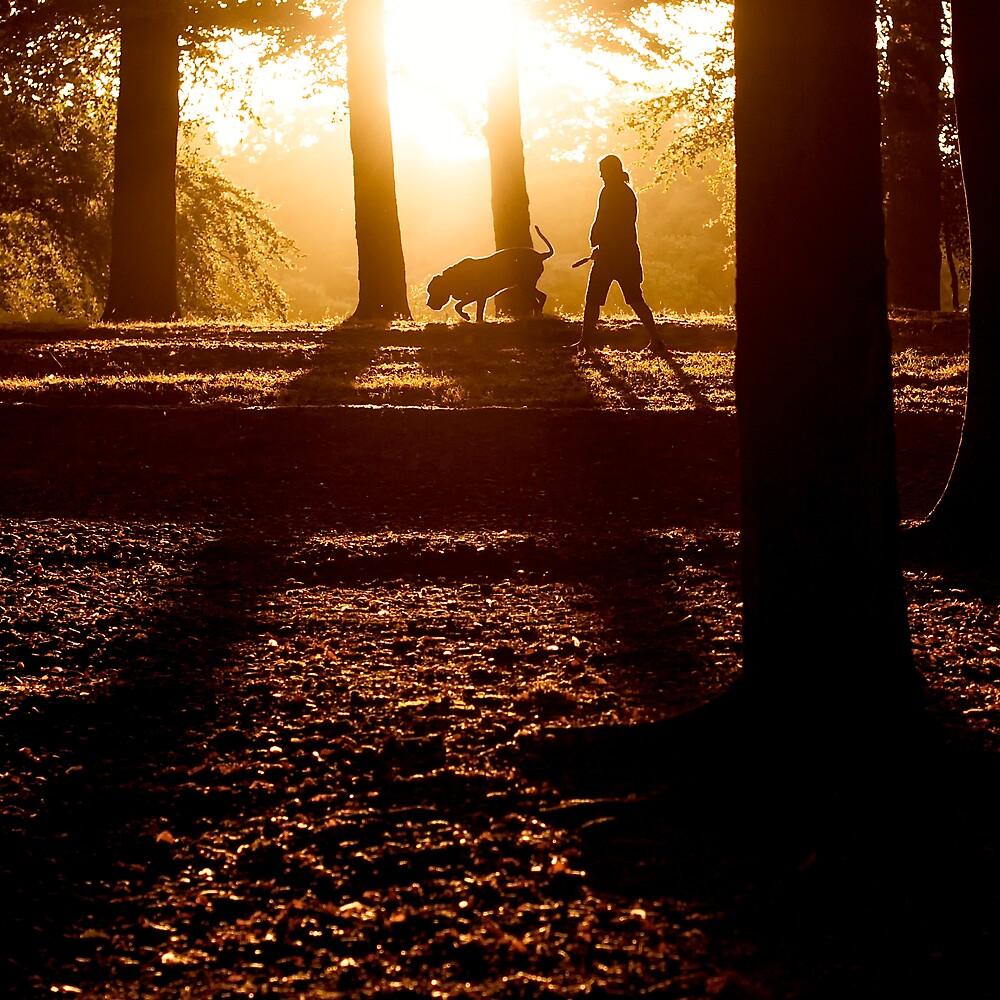 sunset walk by Martin Pickard