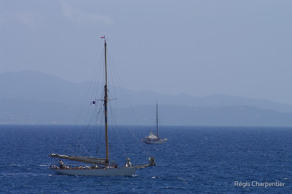 Sailing by Régis Charpentier