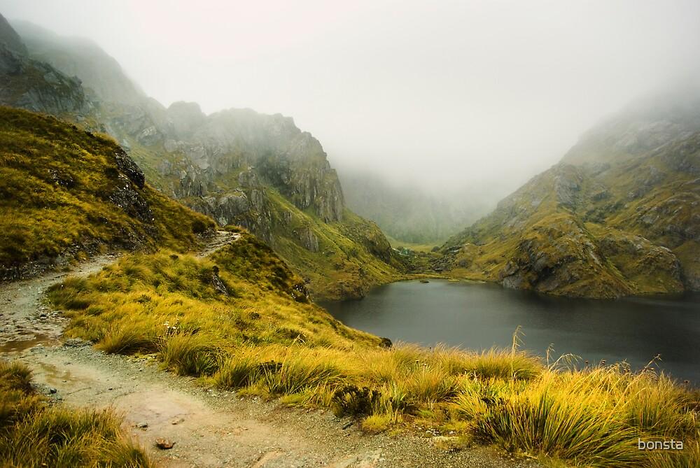 Lake Harris in fog by bonsta