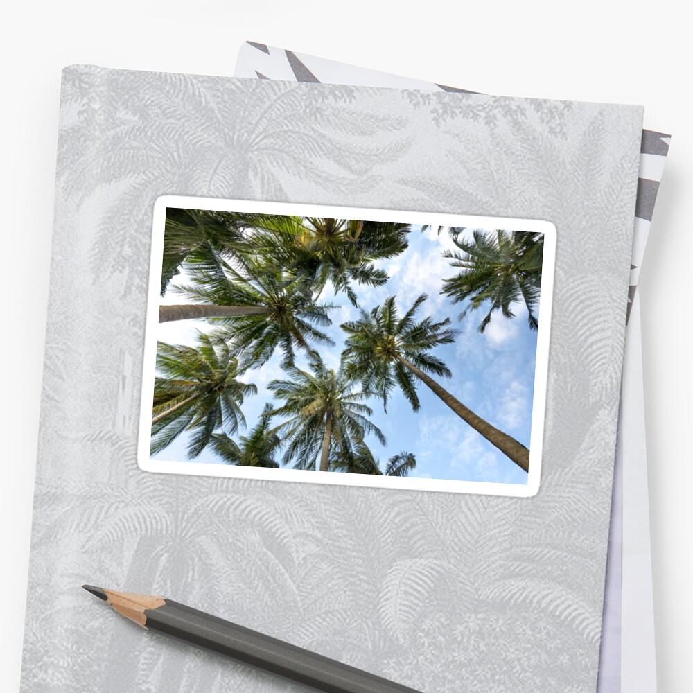 Palm tree coast by onjcdesign