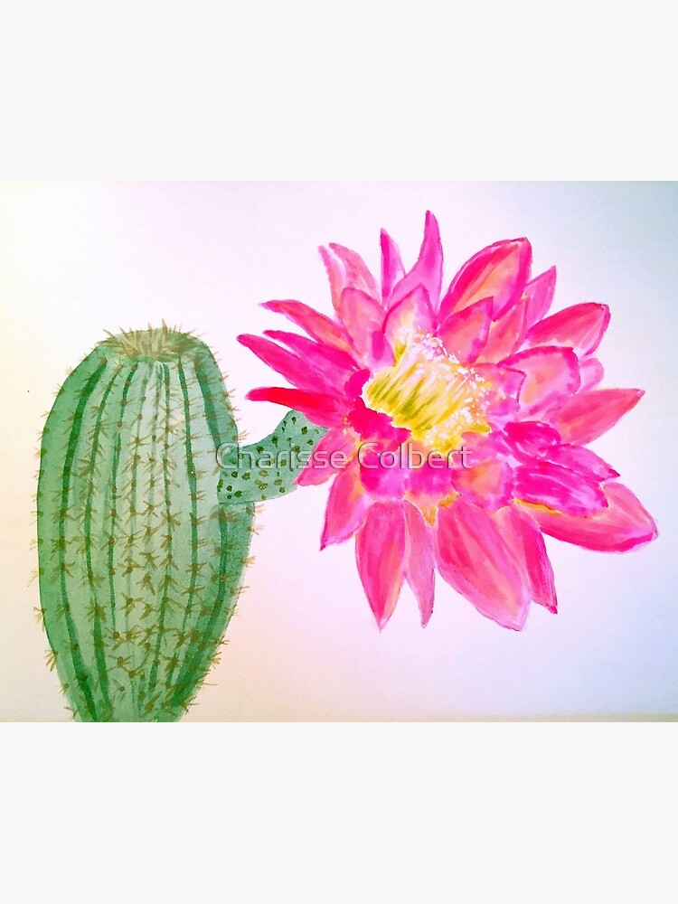 Cactus Bloom by charissecolbert