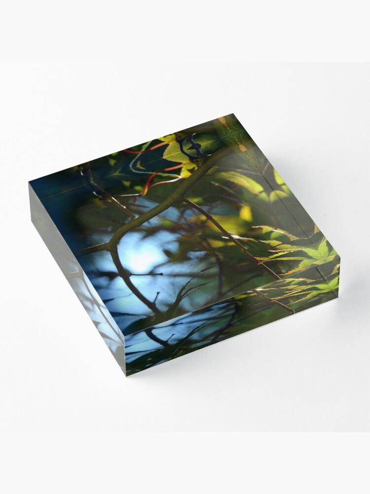 Alternate view of The Serene Wood Acrylic Block