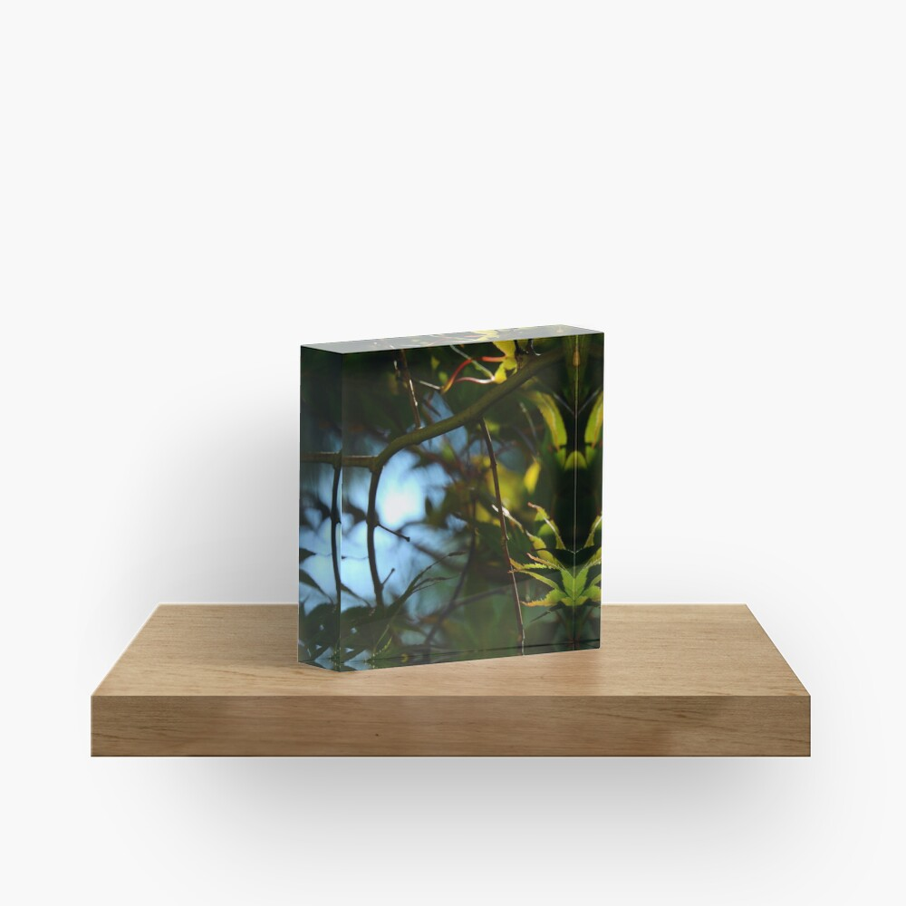 The Serene Wood Acrylic Block