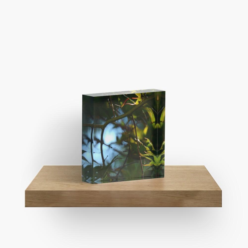 The Serene Wood Acrylic Block