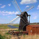 Herringfleet Mill by Carole Stevens