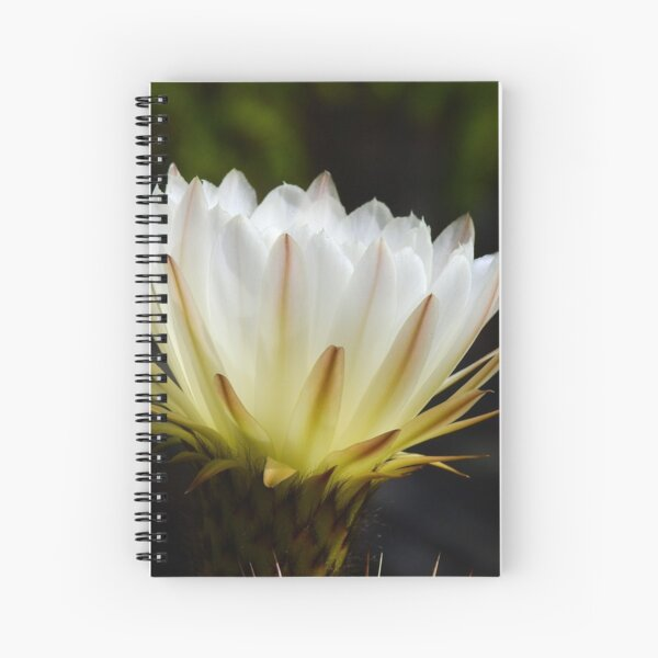 Illuminated White Petals Spiral Notebook