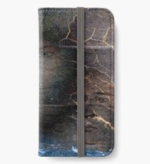 Remembrance of Night iPhone Wallet/Case/Skin
