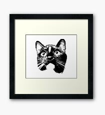 Lovable Black Cat Looking Framed Print