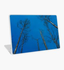 After Wildfire Laptop Skin