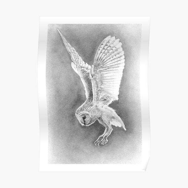 'The Prophet' - Barn Owl in Flight Poster