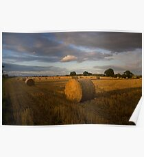 Evening haybales Poster