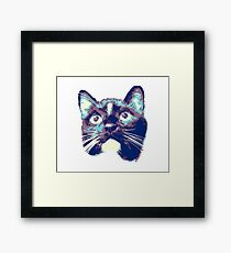 Curious Black Cat Looking Framed Print