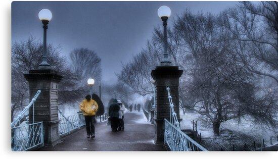 Winter in Boston by LudaNayvelt