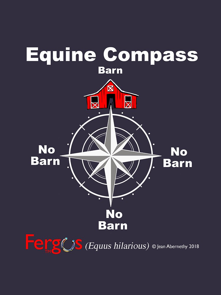 Fergus the Horse: Equine Compass (white) by JeanAbernethy