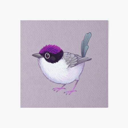 Pride Birds: Purple-Crowned Fairywren Art Board Print