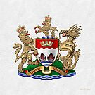 Hong Kong - 1959-1997 Coat of Arms over White Leather  by Serge Averbukh