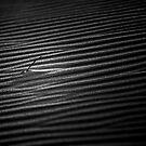 Dune by Ian English
