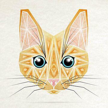 orange cat  by Manoou