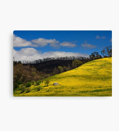 Clash of Seasons Canvas Print