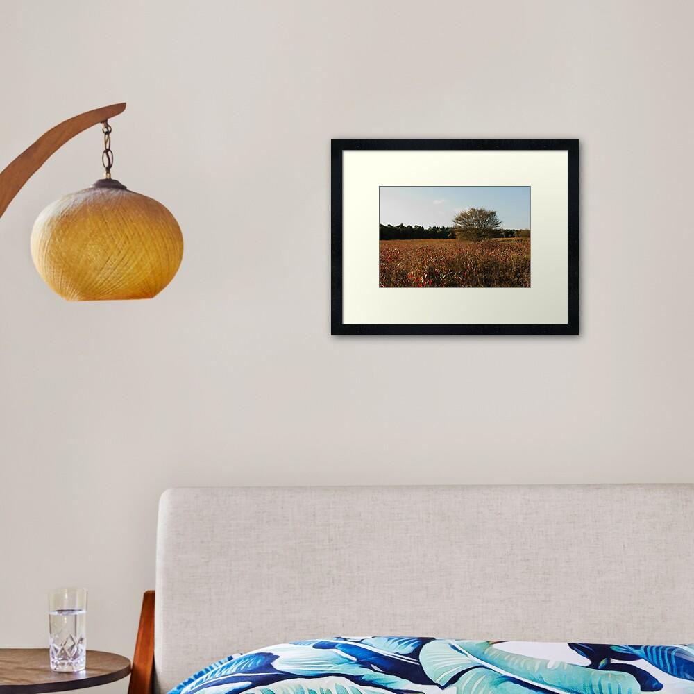 Where blueberry leaves glow Framed Art Print