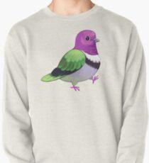 Pride Birds: Pink Headed Fruit Dove Pullover
