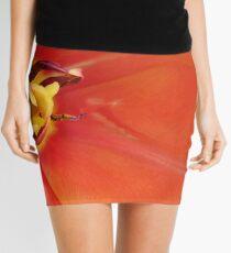 Fireburst Mini Skirt
